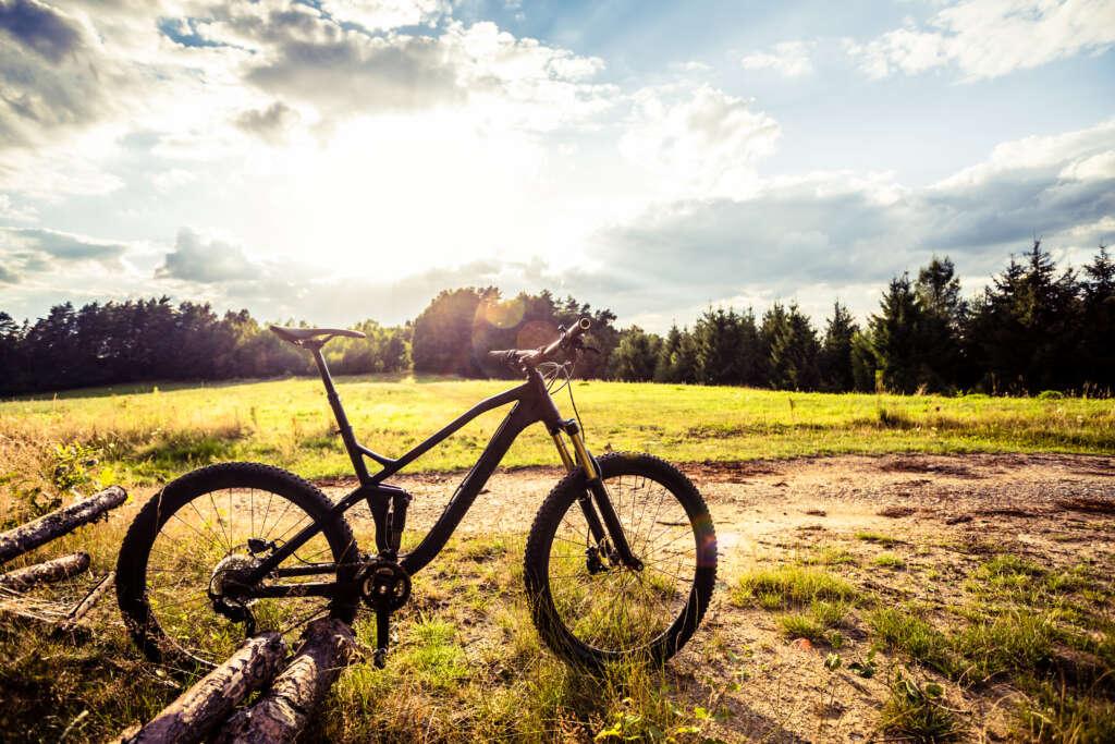 rower MTB na tle gór