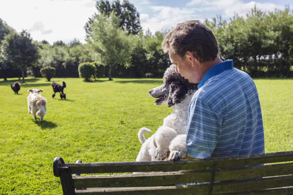 mężczyzna z psami w parku